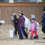 Nazdobení bývají i koně